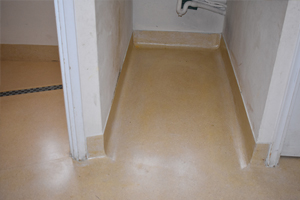 Restored terrazzo floor and coved skirting in a toilet